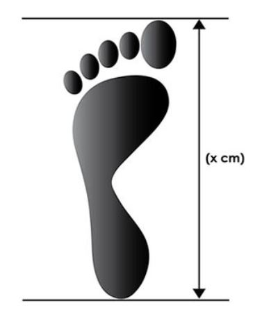 Foot tracing Guide